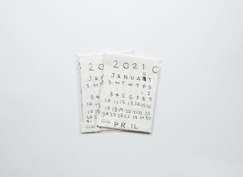 林青那カレンダー 2021 Calendar by Aona Hayashi