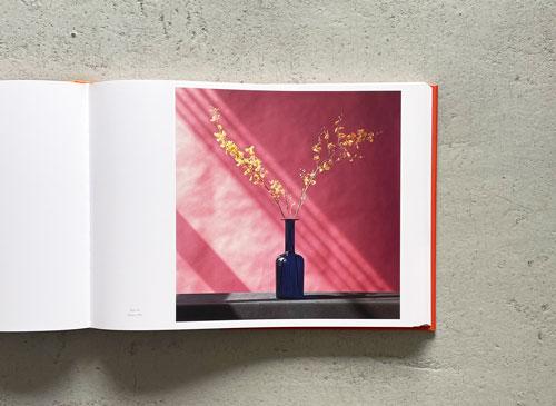 Robert Mapplethorpe: The Complete Flowers