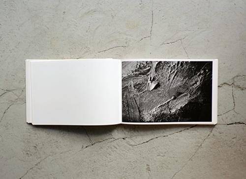 Gerhard Richter 128 Fotos Von Einem Bild 1978
