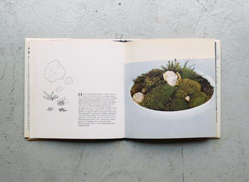 BRUNO MUNARI: A Flower with Love