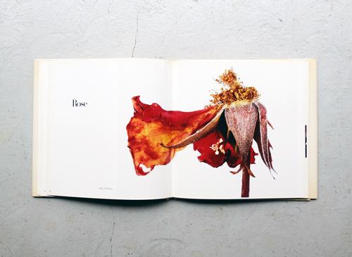 Irving Penn: Flowers