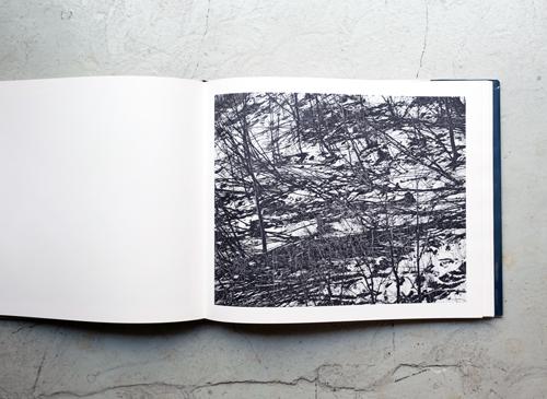 Jean Gaumy: D'après nature