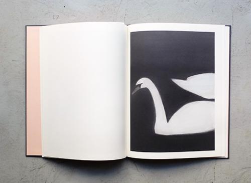 Mats Gustafson: Swan