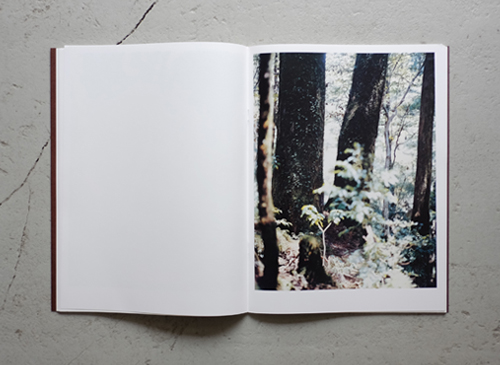 Yoshihiko Ueda: Materia